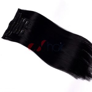 Clip in hair extension #1